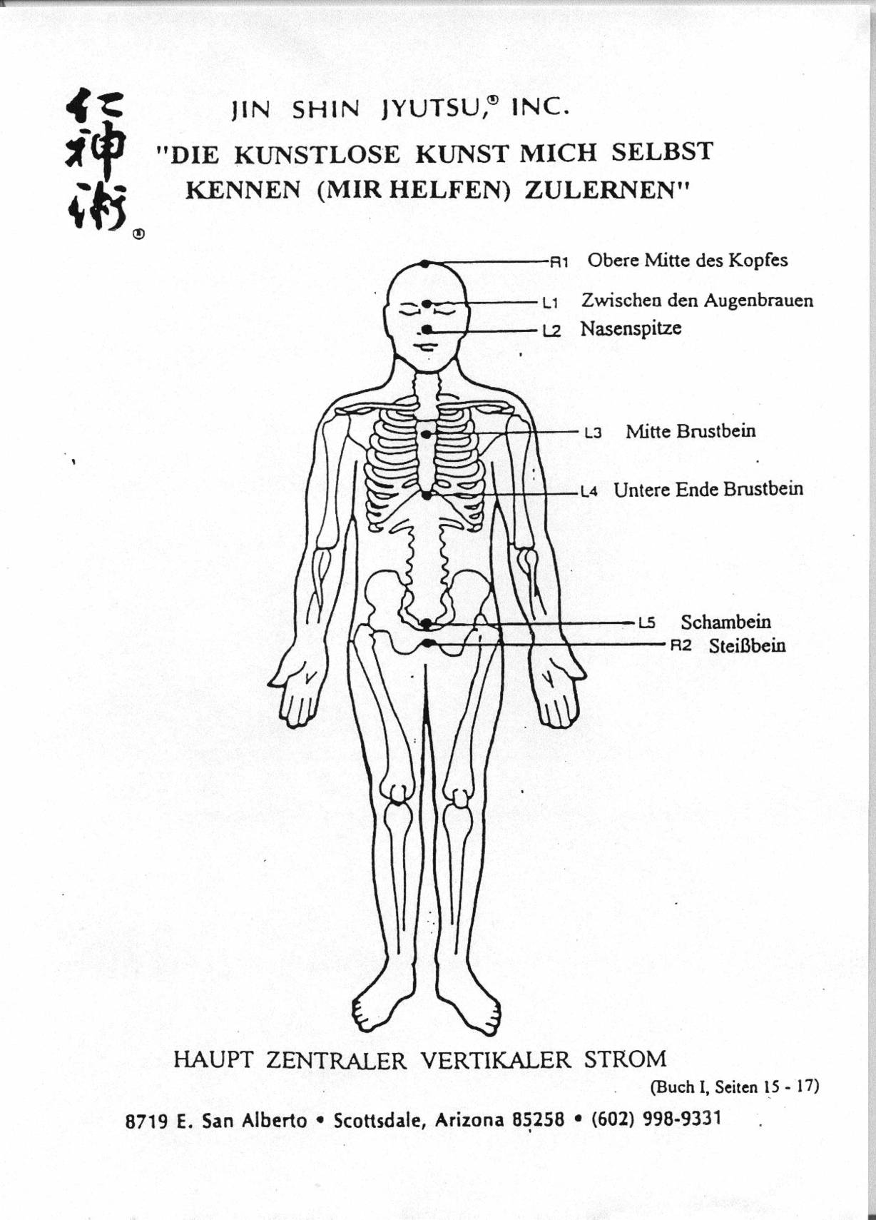 Fein Brustbeins Knochen Ideen - Menschliche Anatomie Bilder ...